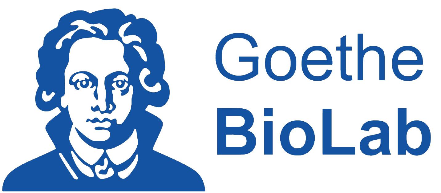 Goethe Uni Email